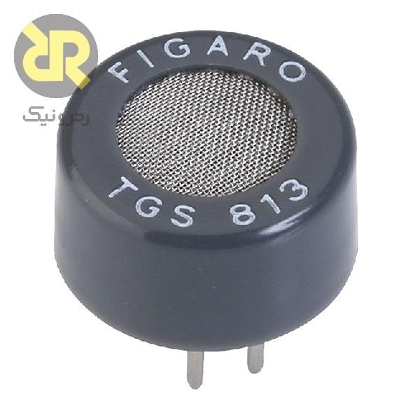 TGS813 pc